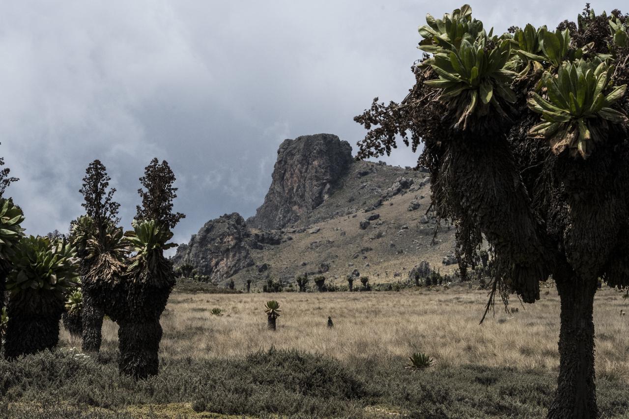 Mt Elgon: emerging challengedestination